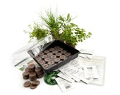 Culinary Indoor Herb Garden Starter Kit - Grow Basil, Dill, Cilantro, Marjoram, Parsley, Sage, Chives, Savory & More - Great Gift Idea - HandyPantry