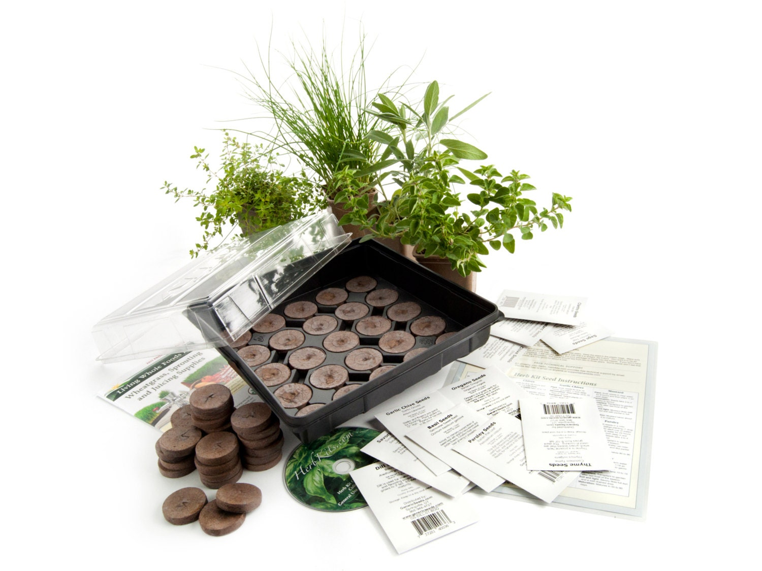 culinary indoor herb garden starter kit grow basil dill