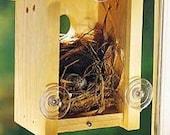 See Through Window Birdhouse (Pine)