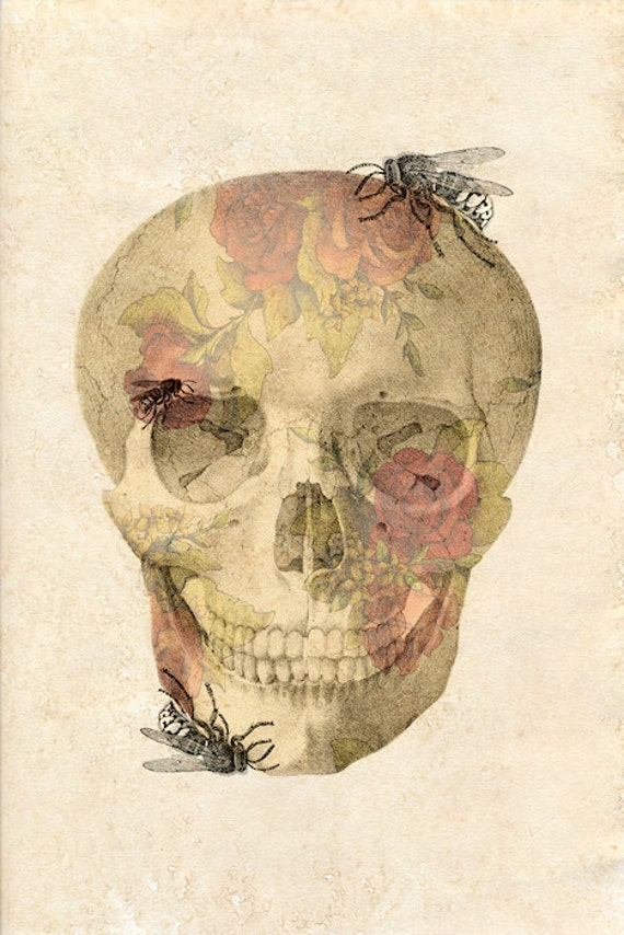 Grin and Bear It - FREE SHIPPING - Skull Rose Insect Illustration Bone Head Bees Bugs Paper Texture Pink Yellow Creepy Surreal Graphic