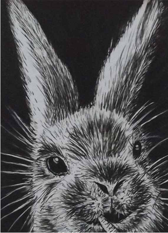Pen And Ink Rabbit Drawing Illustration Original Art Aceo