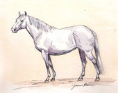 "Horse art original watercolor & ink painting - ""bright gray"""