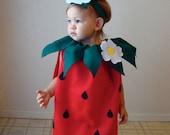 Baby Costume  Strawberry Costume Infant Toddler Costume  Halloween Costume