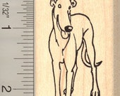 Christmas Greyhound Rubber Stamp H11115 Wood Mounted