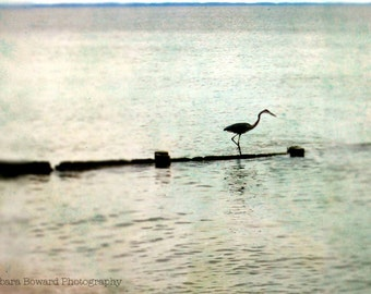Great Blue Heron Fine Art Photography Bird Seashore Print in Blues, Greens, Honey Gold, Gray - Blurry & Dreamy