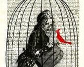 Bird Cage Drawing Illustration Digtal Art