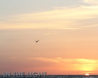 READY To SHIP - Florida Sunset 5 - Treasure Island FL - Fine Art Photograpy - 8x10, 11x14, other sizes available - fPOE