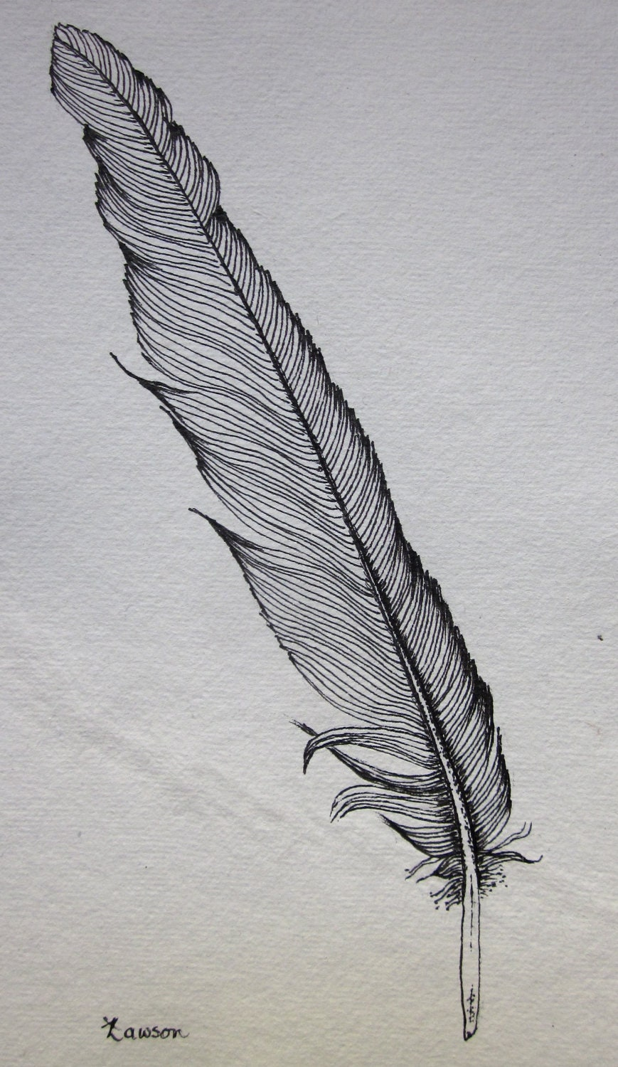 Black Feather 2 original ink drawing