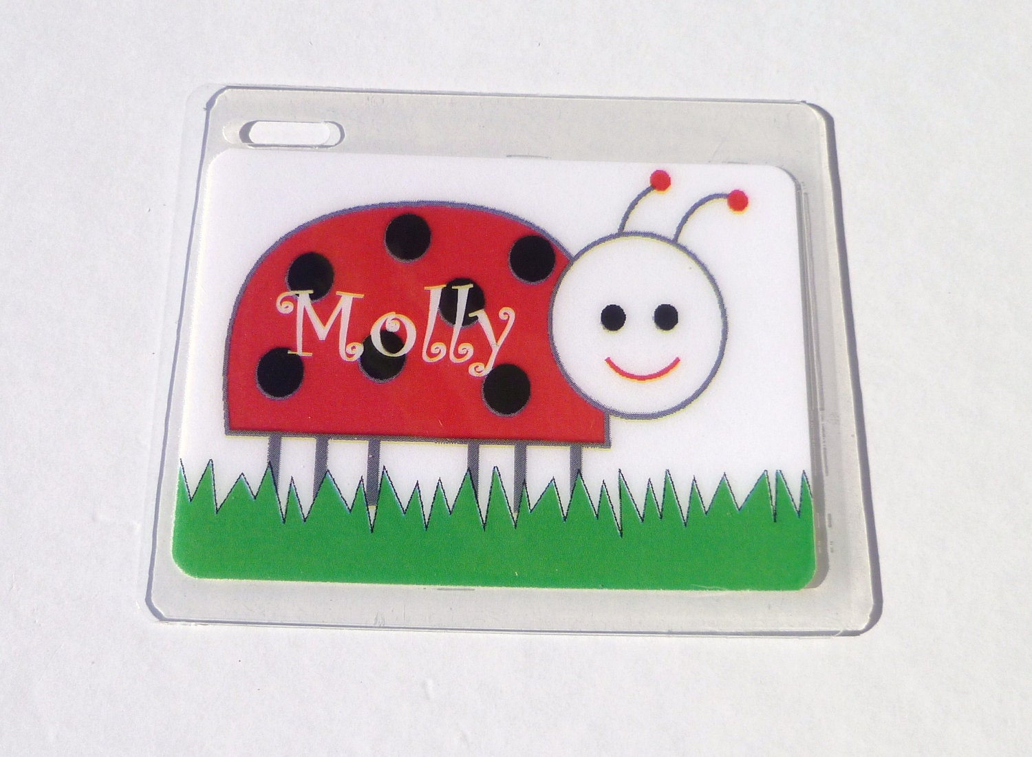 Ladybug Bag Tag Ladybug Name Tag Lady Bug Diaper Bag Name Tag
