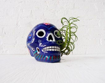 20% SALE - The Day of the Dead Air Plant Garden - Authentic Dia De Los Muertos Giant Skull w/ Live Vinery Plant
