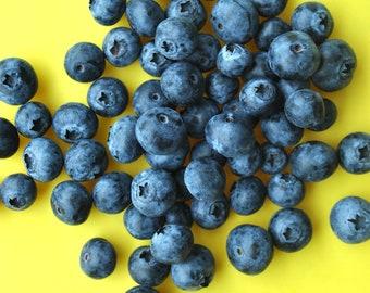 Blueberries Digital Print