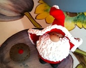 Mr. Claus and Rudolph the Red-Nosed Hedgehog