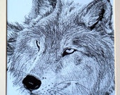 RESERVED DESIREE .  limited edition wolf print
