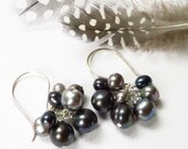 Fresh Water Pearl Earrings, Titanium, Silver & Black Fresh Water Pearls On Handmade French Hooks