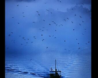 Edward Rieker Photo: Blue