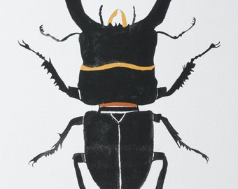 SALE Insect illustration-Stag Beetle Original Watercolor & Gouache by Sarah Rose Storm