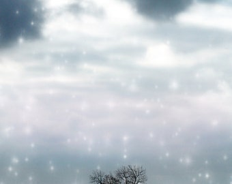 Snowfall, Winter, trees, island, Peaceful, Lake, Snow, Snowflakes,Ice Blue,White,Cold, Solitude, Fine Art Photography Print 8x10