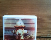 "Hydrant Photo Block 4"" X 4"""