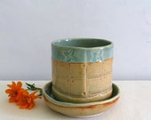 Ceramic Plant Pot with Drainage Dish