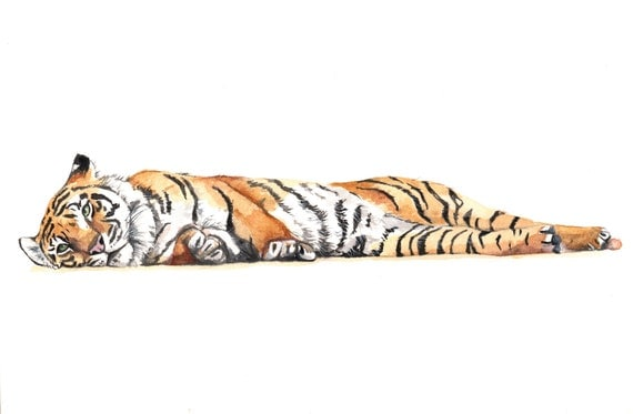 Tiger Painting- T071- animal wildlife nature art - print of watercolor painting - 5 by 7 print