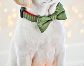 Green Candy Striped Bow Tie or Girl Bow Dog Collar