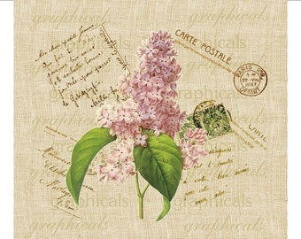 Paris Carte Postale Lilac Instant clip art Digital download image for Iron on fabric transfer burlap decoupage pillow cards totes No. 656