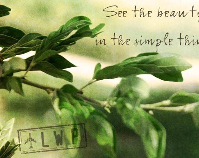 See the Beauty In the Simple Things, Inspirational Wall Art Decor, Nature Detail 12x18 Fine Art Photograph