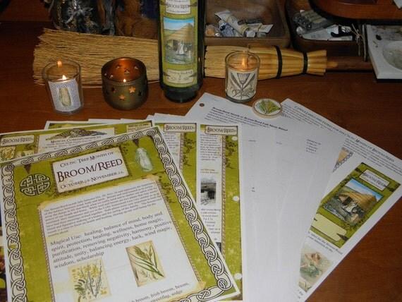 Celtic Tree Calendar Series: Broom/Reed Month Oct. 28-Nov. 24