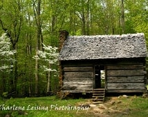 Rustic Cabin,  Smokey Mountains, Tennessee, Fine Art Photography, Green, Nature, Landscape Print, Note Cards, Gift, Cabin Decor, Family Room