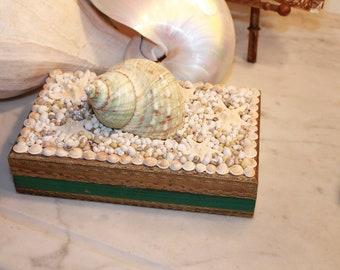 Florentine Seashell Jewelry Box/Seashell Embellished Box