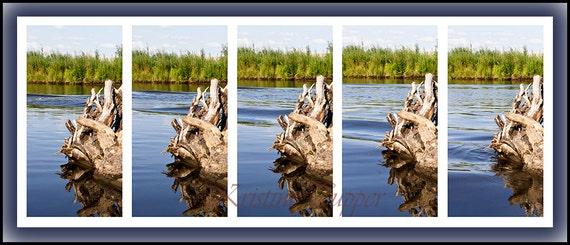 The Passing Boat, Scene at the Chena River in Fairbanks Alaska photography