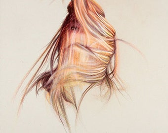 "Original Colored Pencil Drawing, ""Plumage"""