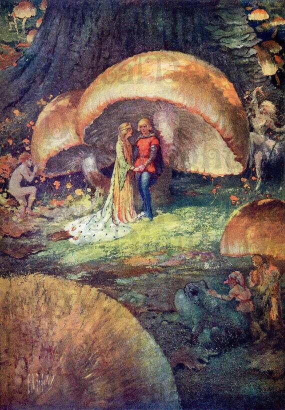 rare fairy wedding under mushroom  vintage book plate