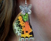 Real Butterfly wing earrings - iridescent blue/green/red/orange/yellow with black