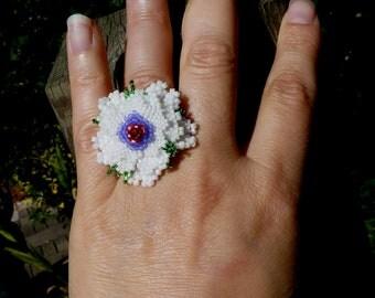 Ring plant spring
