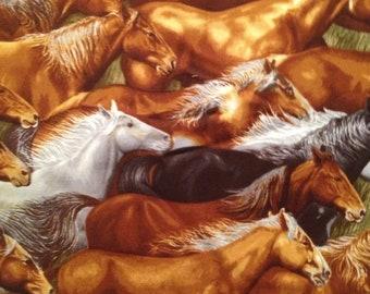 Robert Kaufman - Way Out West - Herd of Horses Running