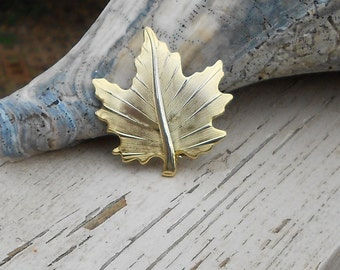 Vintage pin a Maple Leaf brooch in brushed gold tone metal