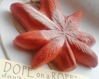 Dope on a Rope Soap - Panama Red - Hemp Soap - Sage and Cedar Essential Oil - Weed Gifts - 420 Gifts - Gifts for Him - Nautral Handmade Soap