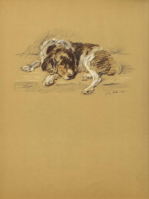Spaniel 1930s Vintage Dog Book Print Wall Decor Vintage