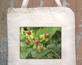 Canvas bag tote with Moths,Graphique Arbor, Herb St. John's Wort, Butterfly