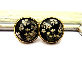 Real Flower Stud Earrings - Tiny earrings studs with queen anne's lace.