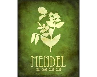 Science Art Print 8x10 - Gregor Mendel Steampunk Art Poster, Rock Star Scientist Art, Pea Plant Genetics, School Art, Geneticist Wall Decor