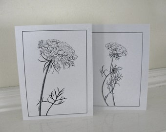 Wedding Thank You Cards Flower Greeting Cards Black and White Queen Anne's Lace Cards Set of 10 with envelopes
