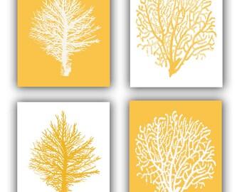 Sea fan prints, Sea fan Coral, sea fan art, Collection seafan, vintage inspired  by coral, gorgonian, beach cottage decor