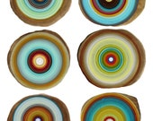 TREE RINGS a modern print art by Tracy Melton