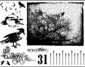 unmounted rubber stamp plate Black bird,raven,goth Halloween  fantasy     tateam EUC team   no.1429