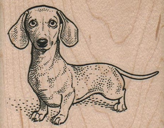 Rubber stamp Wiener Dog Dachshund, Dachshunds, Dogs  wood Mounted  scrapbooking supplies number 1750