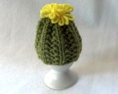 Cactus Egg Cozy - a wool cosy, egg warmer for boiled eggs
