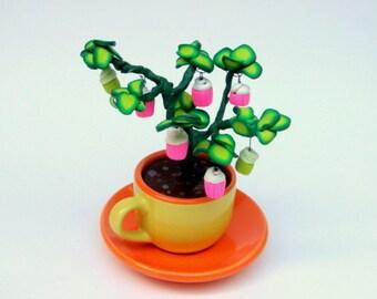 Organic Cupcakes