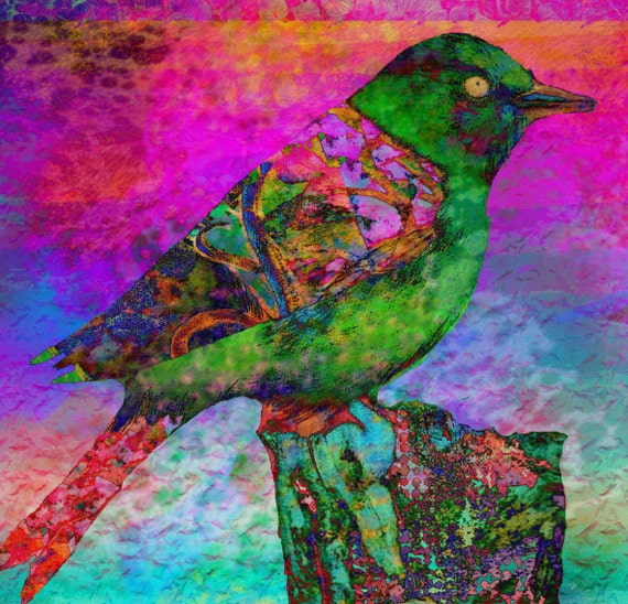 Paradise   inch  birds trees leaves landscape flowers  colorful drawing digital collage